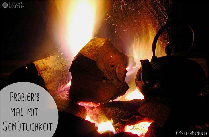 Die Zutaten für einen gemütlichen Abend: Ein #Matcha #Tee, #Kaminfeuer und eine #Kuscheldecke! #MatchaMoments von Koumei Matcha, gefunden im Matcha Blog: http://www.koumei-matcha.de/blog/ #gemuetlich #gemuetlichkeit