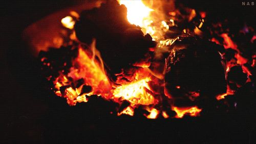 Dirty Hippies Productions — What Happens Around The Campfire, Stays At The...