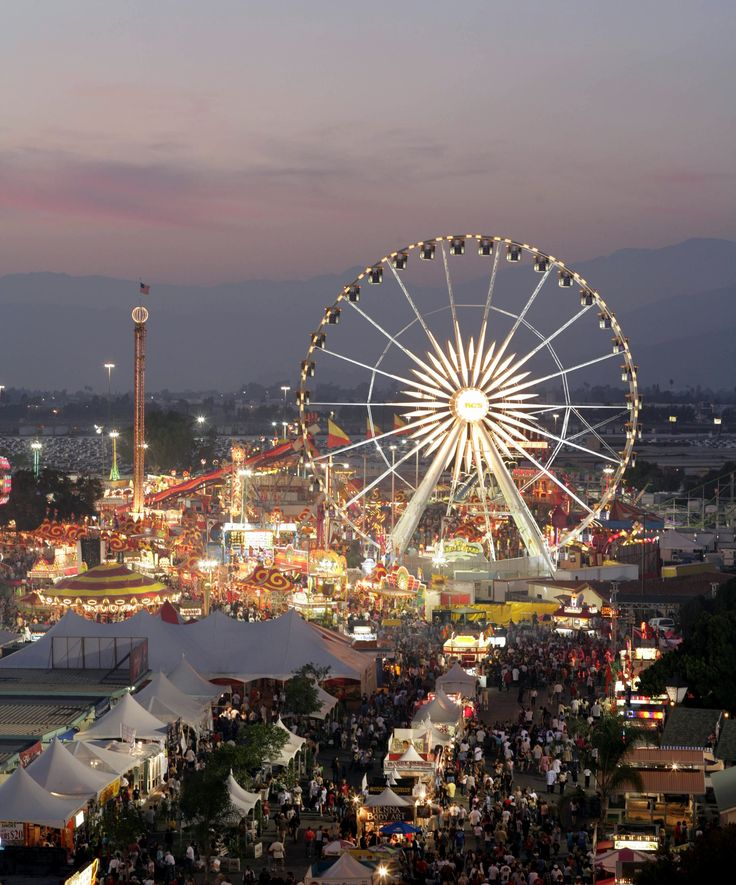 What's your favorite fair food? Jennifer Hotes wants to know!