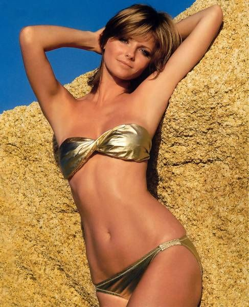 Cheryl Tiegs  Supermodels - Then and Now list: Amazing Beautiful, Pictor Artworks, Gold Fashion, Cheryl Thereof, Beautiful Ii, Tieg Supermodels, Beautiful People, Beautiful Art, Cheryl Teig