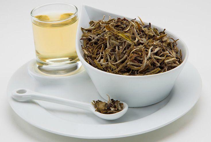 El té es saludable y eso dejó de ser un misterio hace rato. Lo novedoso es que un nuevo estudio ha demostrado que el té blanco previene la formación temprana de líneas finas de expresión y arrugas, además de tener propiedades adelgazantes.