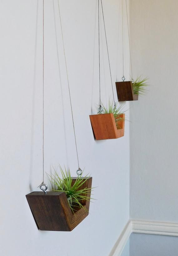 Airplant Wall Hanging Wall Planter Airplants Wooden Airplant