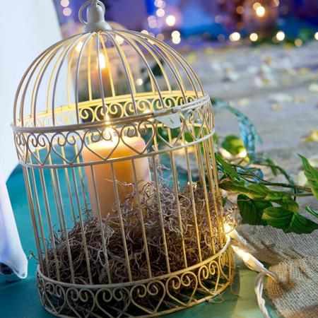 Best 25 bird cage centerpiece ideas on pinterest for Cage d oiseau decorative