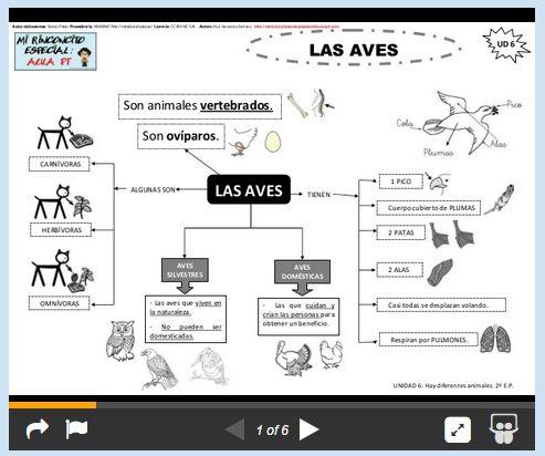 Esquemas animales vertebrados. http://mirinconcitoespecialaulapt.blogspot.com.es/2015/02/los-animales-vertebrados-e.html