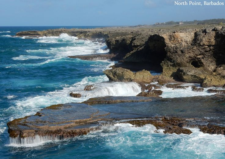 Head to the north or east coast of Barbados to be awed by wondrous waves!