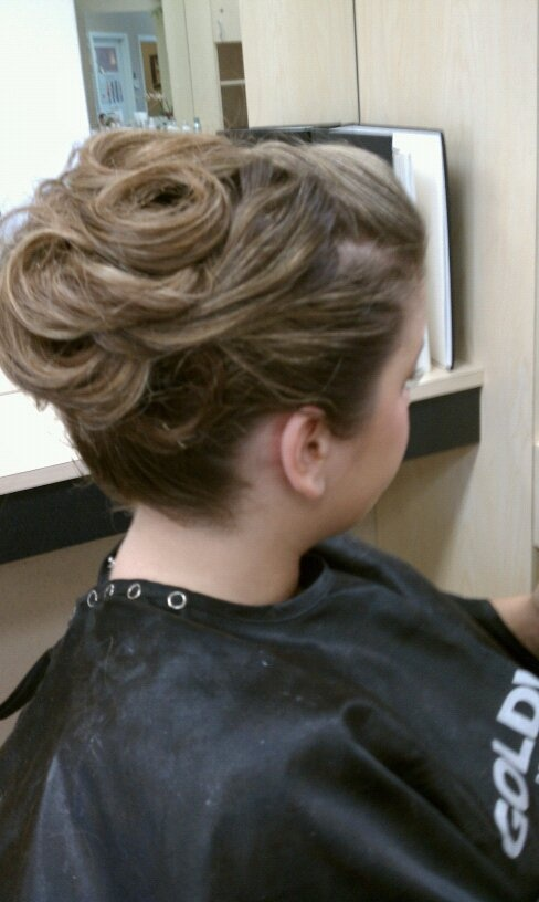 60 best hair extensions color updos by janelle saenz ca images updo for prom pmusecretfo Gallery