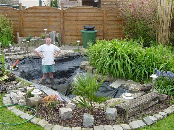 bassin de jardin avec koi