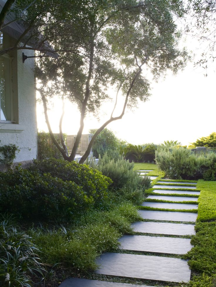 17 best images about vaucluse 2 on pinterest gardens for William garden designs