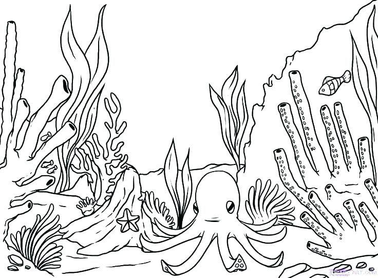 Ocean Coloring Pages Ocean Coloring Pages Coral Reef Drawing
