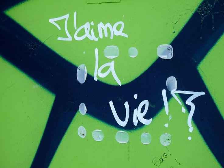 ~Shannon Brockhurst 2013, Luxembourg City, Luxembourg. Graffiti j'aime la vie I love the life