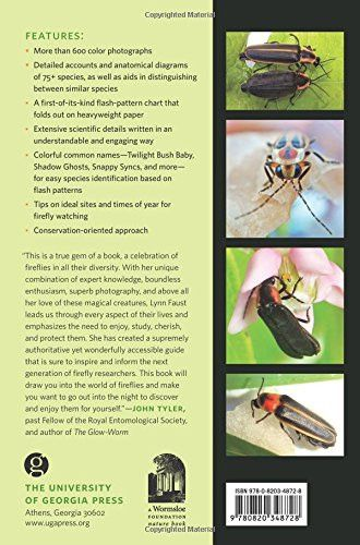 Fireflies, Glow-worms, and Lightning Bugs: Identification and Natural History of the Fireflies of th