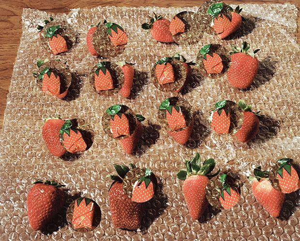 Lucas Blalock: Strawberries (fresh forever), 2014
