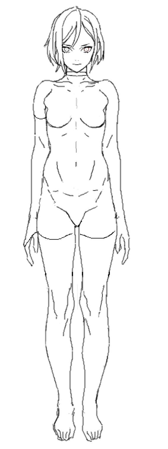 Average female figure reference