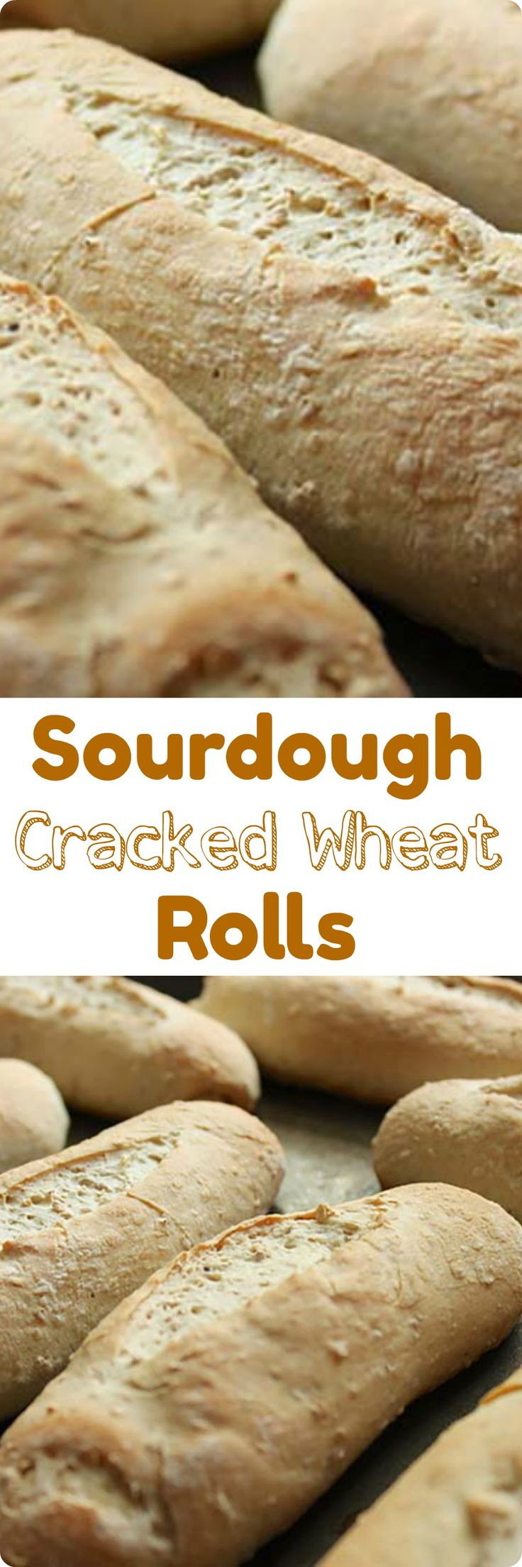 Sourdough Cracked Wheat Rolls | Simple to make, these sourdough rolls have the added flavor and texture of cracked wheat. Find recipe at redstaryeast.com.