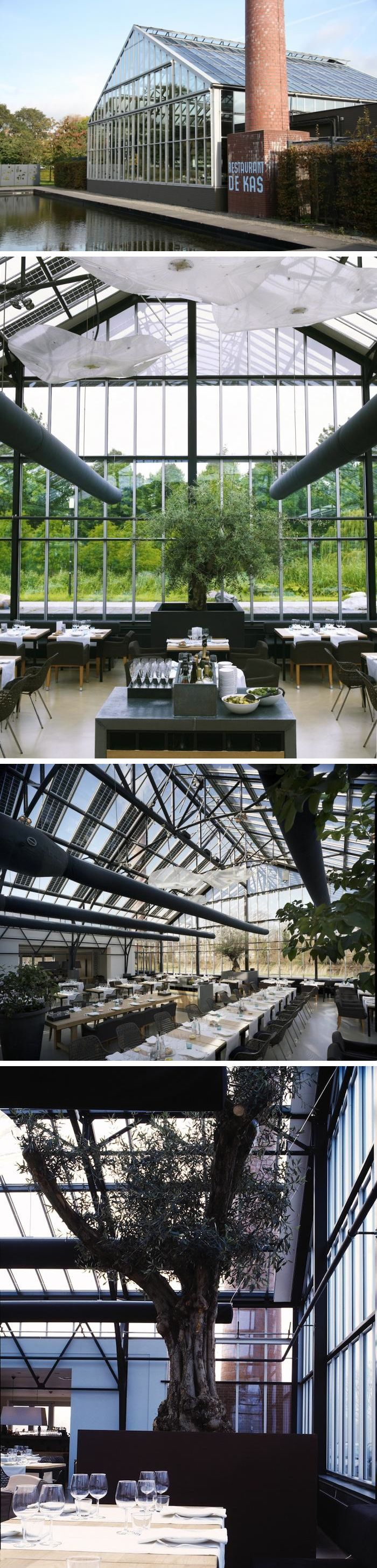best 25 greenhouse restaurant ideas on pinterest