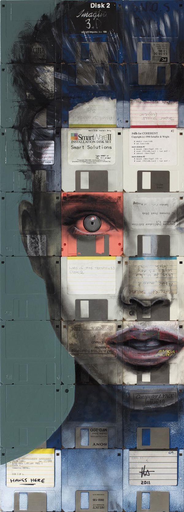 Art with Floppy Disks by Nick Gentry This links to order and disorder because the a picture of a woman has been created by only using floppy disks in a specific order. However the disks have been painted in different colours that is unrealistic