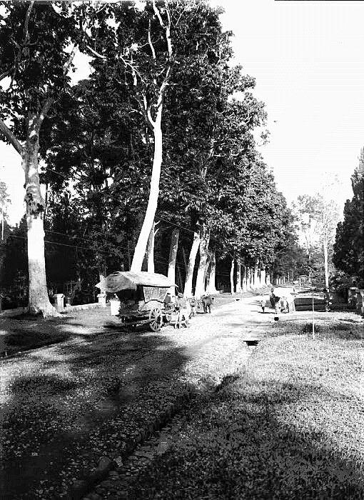 De Toetangsche weg te Salatiga, Midden-Java. 1918