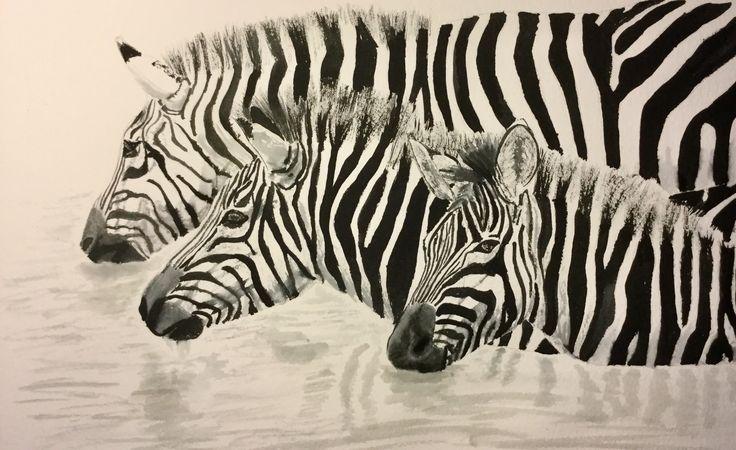 Zebra Crossing #art #ink & pencil #zebra