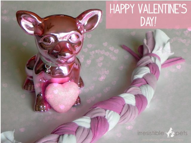 Valentine S Day Talking Toys : Best images about valentine s day pets on pinterest