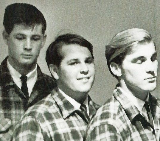 Brian, Carl, and Dennis Wilson