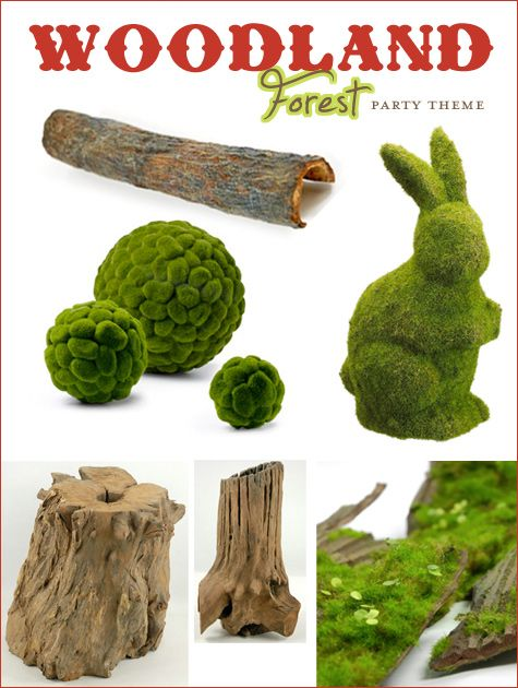 Moss and woody things to decorate food display table(s). Maybe for other tables? No bunny.