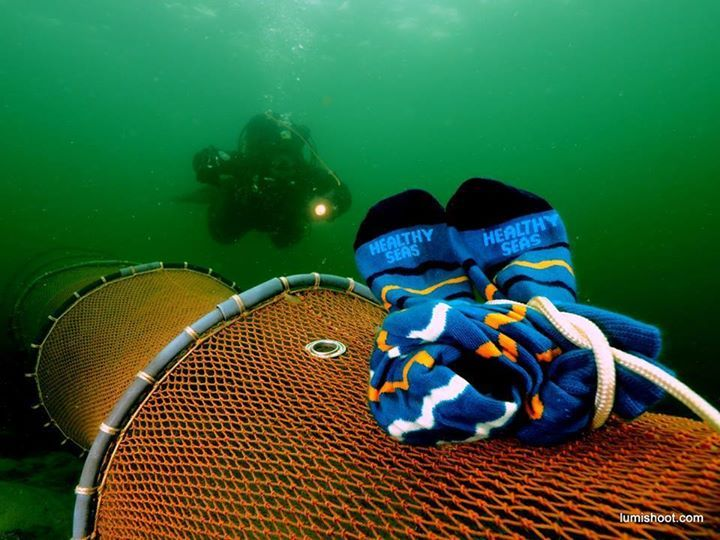 Look at this very cool Healthy Seas promotion photo by Dutch underwater photographer John Landa. We love it! :D  #ghostfishing #healthyseas #socks #nets #fishing #fisheries #recycling #upcycling #fromwasttowear #makethechange #conservation #action #fishing #flyfishing #fishinglife #fishingtrip #fishingboat #troutfishing #sportfishing #fishingislife #fishingpicoftheday #fishingdaily #riverfishing #freshwaterfishing #offshorefishing #deepseafishing #fishingaddict #lurefishing #lovefishing…