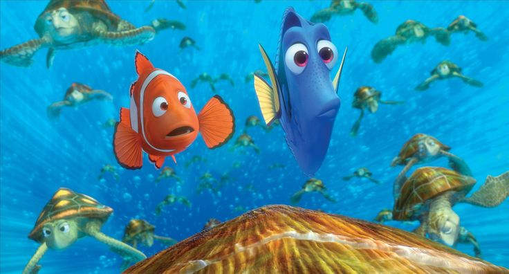 Finding Nemo HD Wallpapers - Free download latest Finding Nemo HD Wallpapers for Computer, Mobile, iPhone, iPad or any Gadget at WallpapersCharlie.com.