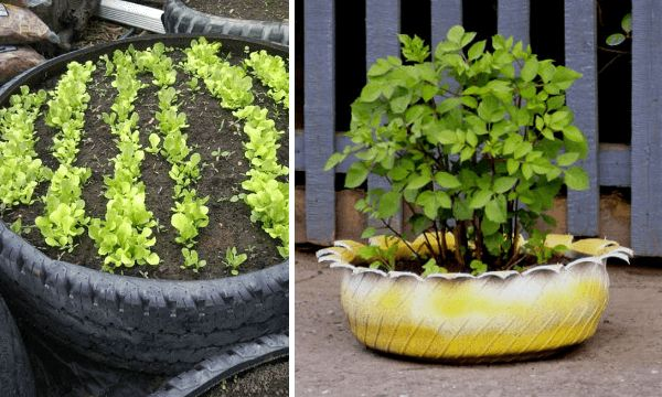 Ideas para sembrar en neumáticos reciclados