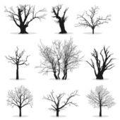 Collectie van silhouetten van de bomen — Stockvector