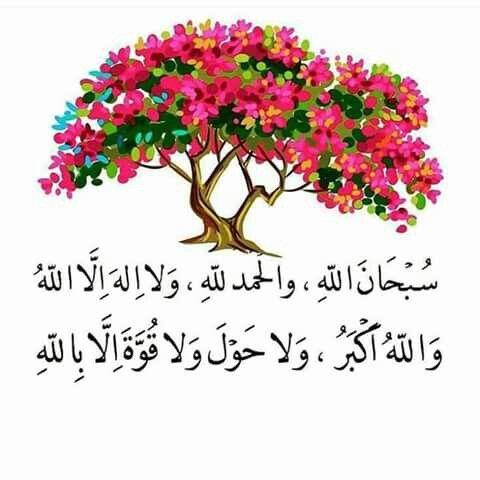 سبحان الله والحمدلله ولا إله إلا الله والله أكبر