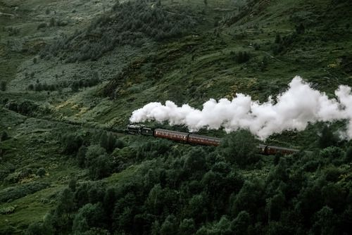 train, nature, and green resmi