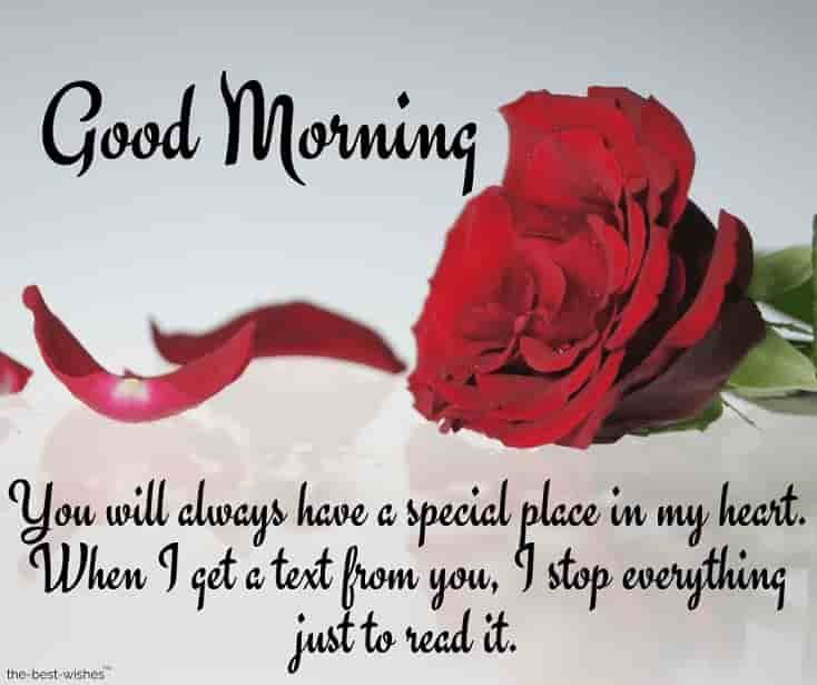 Best Good Morning Wishes For Girlfriend   Good Morning