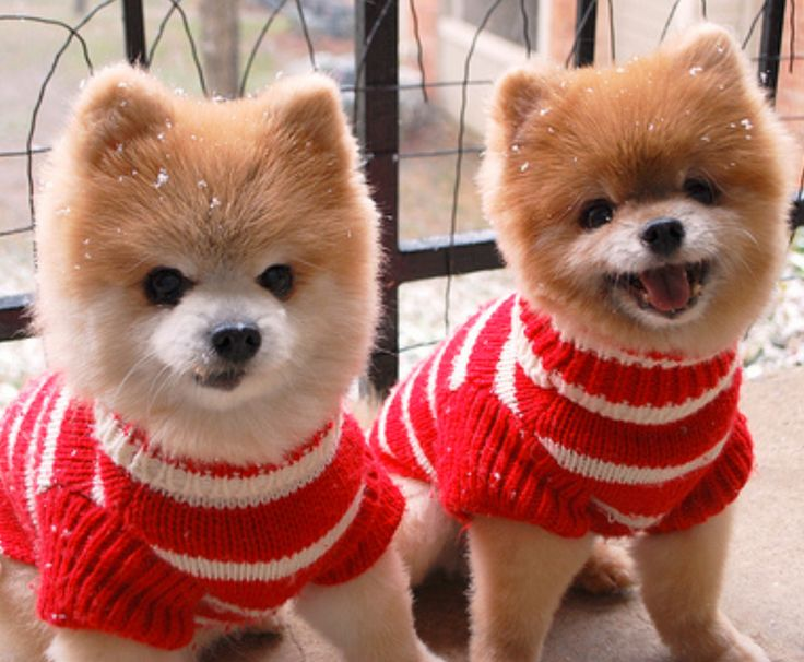 That awkward moment when someone else shows up in the same outfit