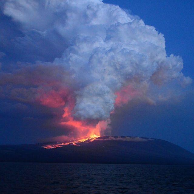 Una foto scattata da Diego Paredes, guida della spedizione La Pinta Yatch, mostra un'eruzione del vulcano Wolf, la prima in 33 anni, ad Isabela Island, Galapagos, Ecuador
