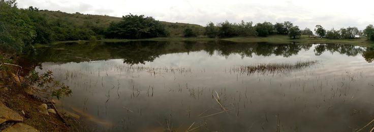 Al rescate de la Laguna del Sapo