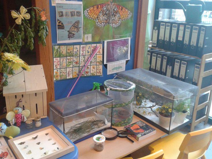 rupsen -en vlinderhoek in de klas