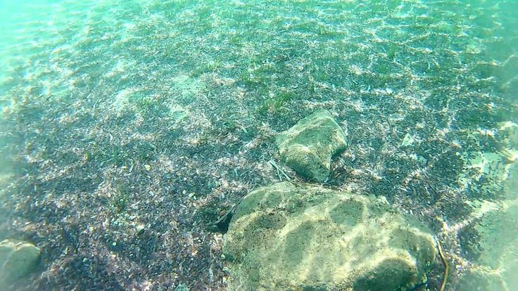 @Greece@Halkidiki@Ammouliani@AgiosGeorgios Under Water 5th by Helianthus...