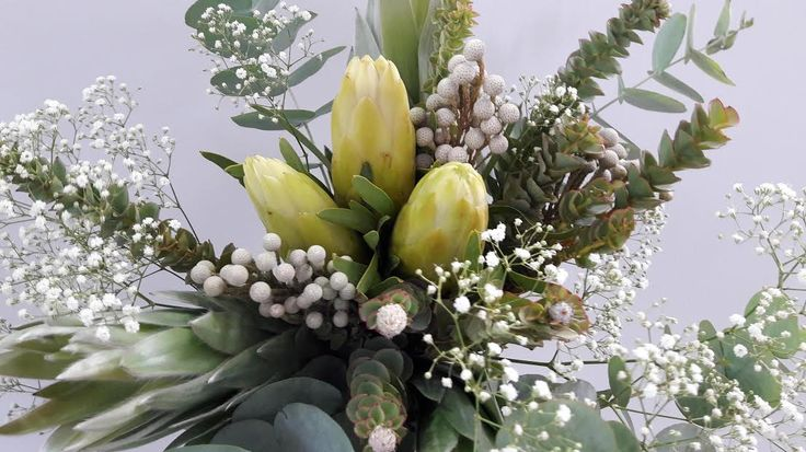 Part 2  How to add South African magic to a winter wonderland wedding - succulents