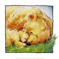 Framed Mother Bear's Love II