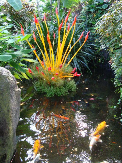 Best 25 koi pond design ideas on pinterest koi ponds for Outside goldfish ponds