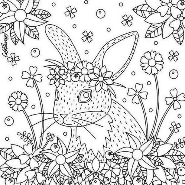 Mais de 800 desenhos para imprimir e pintar! Link do site ...