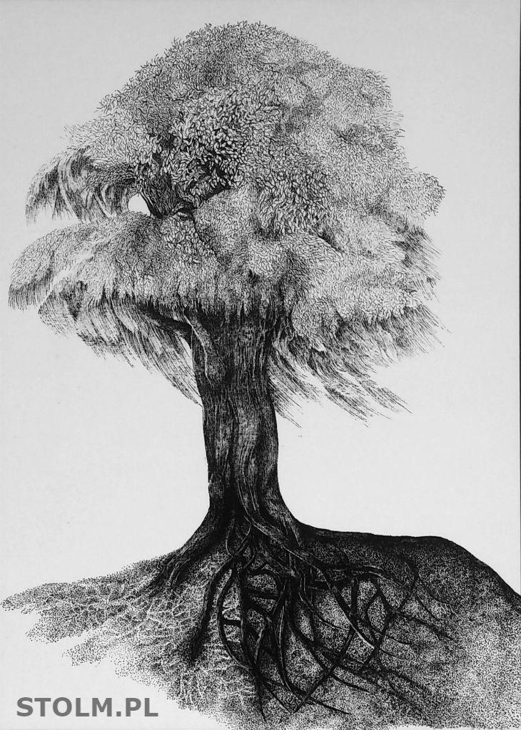Tree ink on paper artist Stanisława Olszańska Marszałek abstraction art