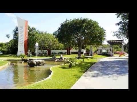 CASA SERENA, PLAYA DEL CARMEN FOR SALE - YouTube                              INFO: alopez@sirmexico.com