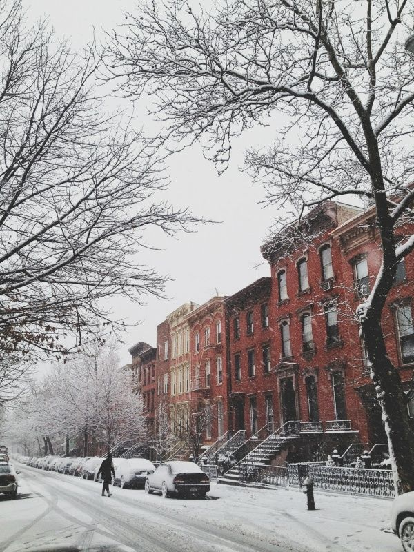 Winter in NYC / photo by Steph Goralnick