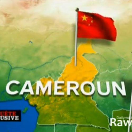 Une delegation chinoise séjourne à Yaoundé un mois après la délivrance des premiers terminaux intelligents mobiles du projet de réseau informatique pour l&rsq