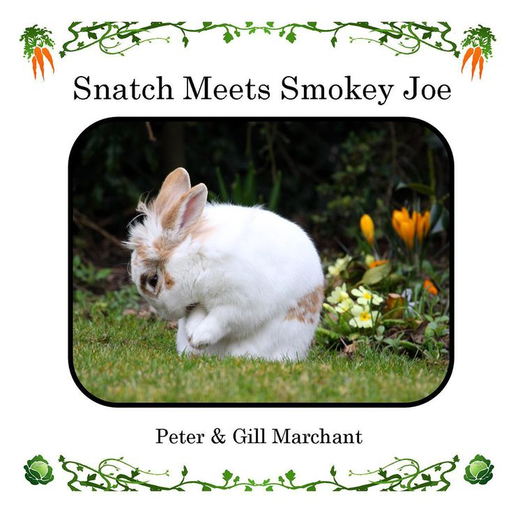 Snatch Meets Smokey Joe   For more detail about this book please visit:  http://www.rowanvalebooks.com/book/snatch-meets-smokey-joe