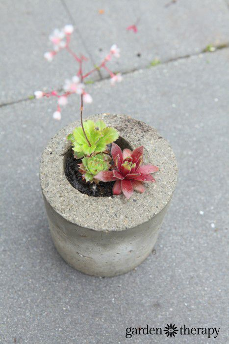 Make garden planetrs from concrete and yogurt containers