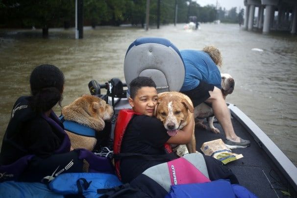 How the chaos of Hurricane Katrina helped save pets from flooding in Texas - The Washington Post