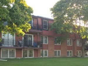 Newly Upgraded One Bedroom Apartment for Rent $925+Hydro Belleville Belleville Area image 1