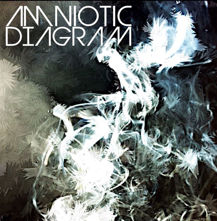 AMNIOTIC - Diagram EP | Out on: amnioticofficial.bandcamp.com/album/diagram   #AMNIOTIC #Diagram #EP #new #electronic #music #Bandcamp #digital #release #amnioticofficial #amnioticsound #independent #electronica #MusicForCyborgs   (©AMNIOTIC 2017)
